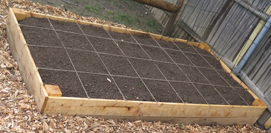 Some of the beds are already sectioned and have seeds planted.