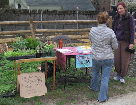 As part of Earth Day, the gardeners offered free seeds and plants for sale.