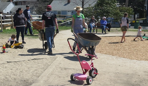A parade of wheelbarrows through the playground didn't seem to bother any of the children playing there.