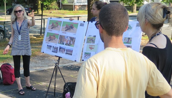 City landscape architect Megan Gardner explains the plan for the park renovations at a public meeting June 12.