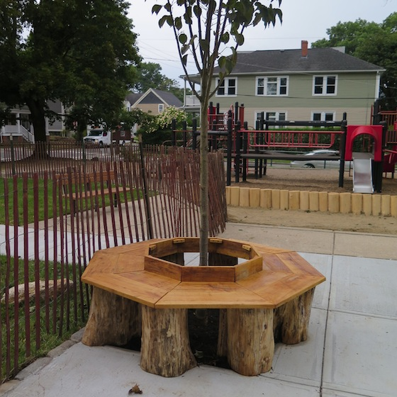 As of Tuesday, city workers had added the bench around the news shade tree and installed fencing to protect areas of new gress.